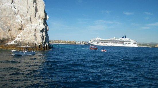 Beautiful Views: Fotografía De Ecocat Catamaran Tours
