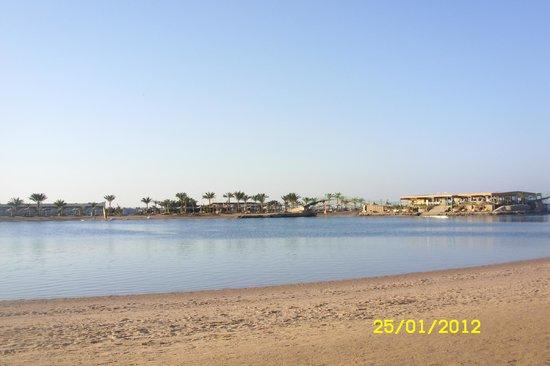 The Desert Rose Resort : Лагуна в отеле