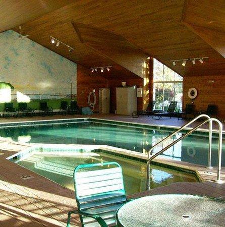 Pheasant Park: Indoor Pool Area