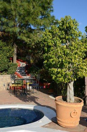 Casa Estrella de la Valenciana : piscine jardin