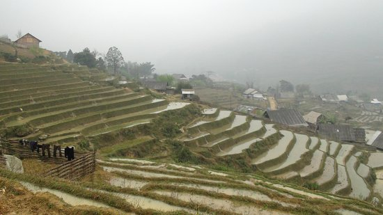 Sapa Trekking Homestay - Private tours