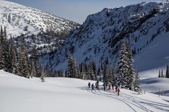 Selkirk Snowcat Skiing: Selkirk Wilderness