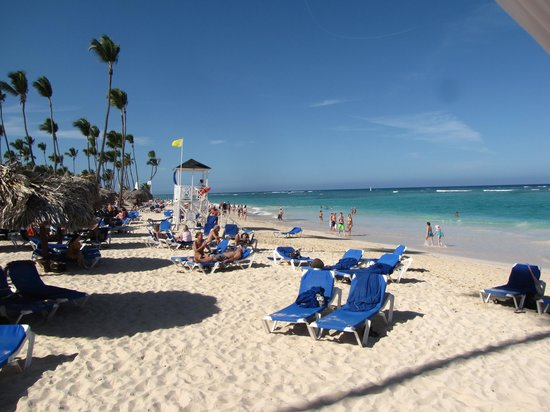Grand Bahia Principe Punta Cana: The beach is beautiful but there is nothing to see undersater