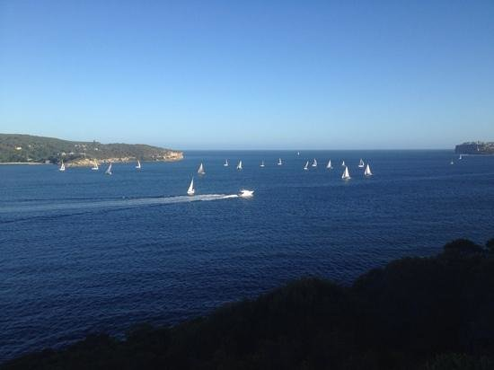 The Spit Bridge to Manly Walk : sailboats on the walk