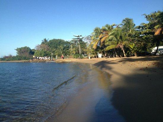 Blue Boy Inn : The beach at the Marina