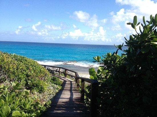 Stella Maris Resort Club: Walk to Nature Pool