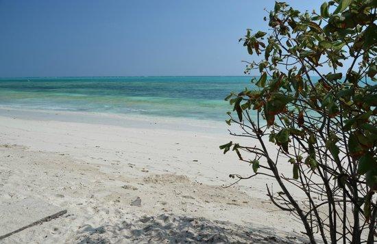 Kichanga Lodge : La spiaggia