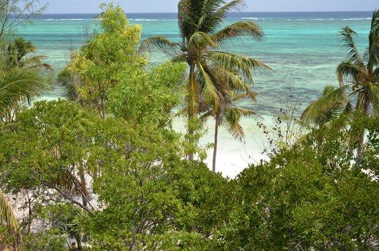 Kichanga Lodge: Visuale dal nostro beachfront