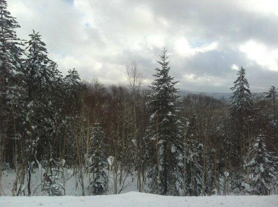 Niseko Village Ski Resort: On our way to Sapporo from Kutchan