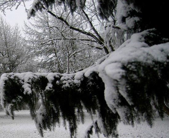 Hennebjerg, Denmark: vinter