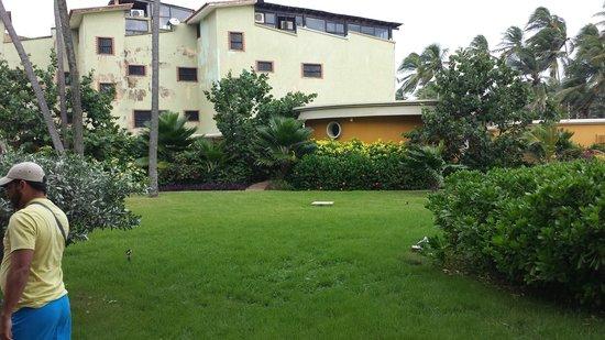 Hotel Playaroa: Zonas verdes