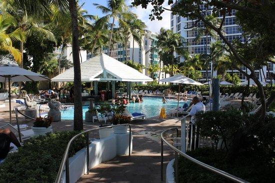 The Condado Plaza Hilton : The pool
