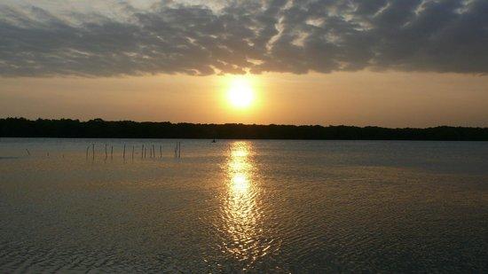 Puranagama Eco Lodge : Sunset on the lagoon