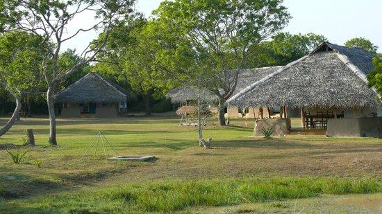 Puranagama Eco Lodge : Eco Village