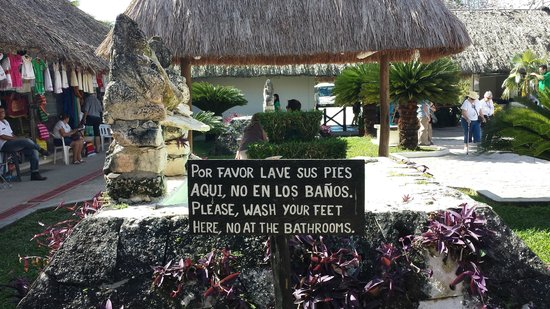 San Gervasio Mayan Archaeological Site: do not drink the water