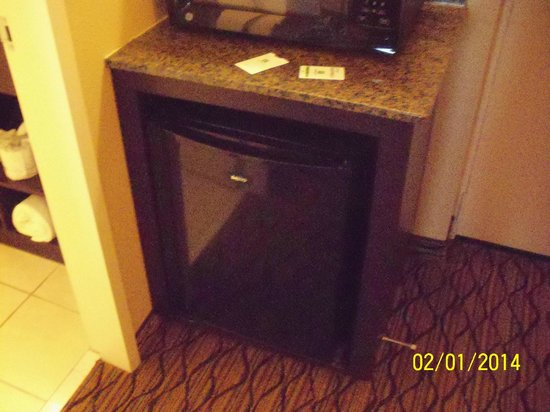 Holiday Inn & Suites Across from Universal Orlando: Mini-fridge