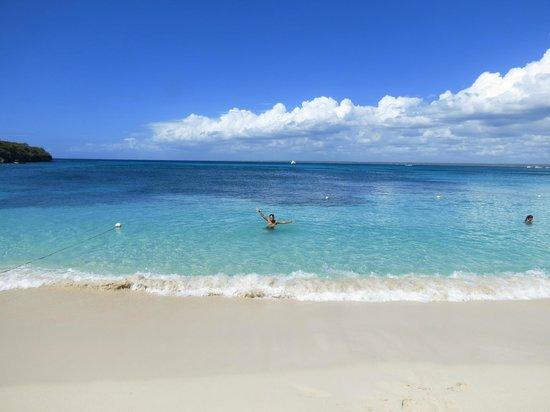 Catalina Island: Playa principal