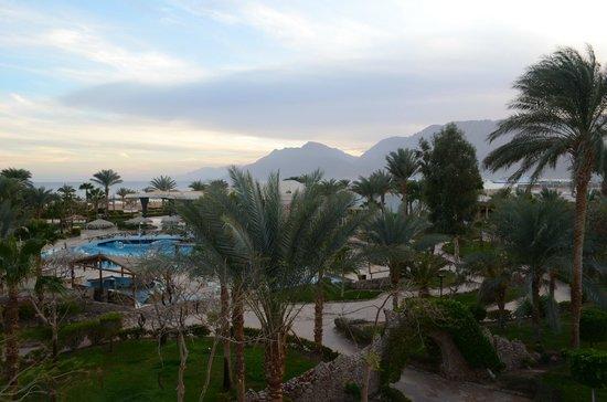 Nuweiba Coral Resort: Вид из окна в первом корпусе на 3 этаже (первые номера)