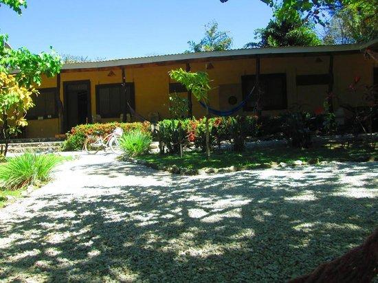 Nosara Beach Hostel : -