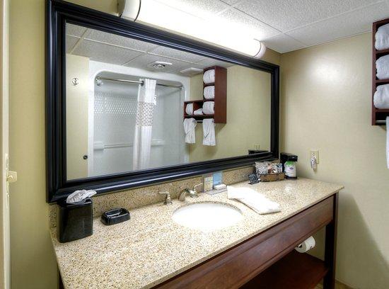 Hampton Inn Russellville: Standard Bathroom