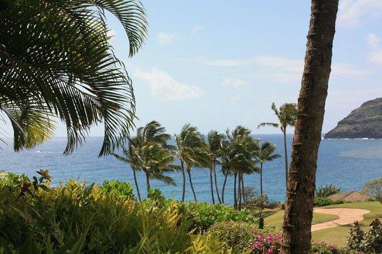Marriott's Kauai Lagoons - Kalanipu'u : View of the waterway
