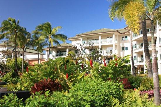 Marriott's Kauai Lagoons - Kalanipu'u: Another view of the grounds and resort