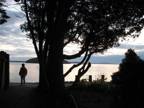 Early morning at the Bar Harbor Shore Path