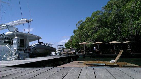 La Ardilena: El Muelle