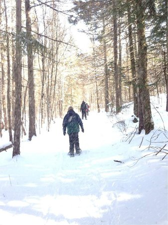 Great Glen Trails Outdoor Center: Snowshoeing Trail