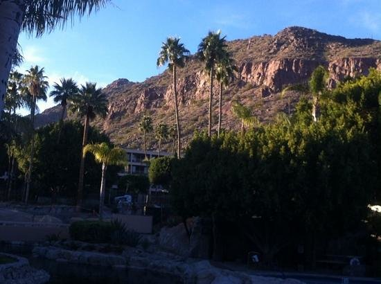 The Phoenician, Scottsdale: camelback view from property