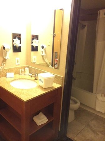 Rodeway Inn: bathroom and sink