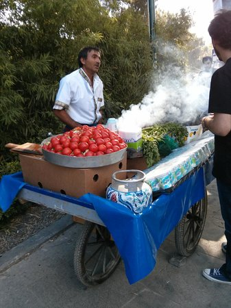 Gourmet Holidays Cooking Classes: Protesting meatballs of Gezi Park
