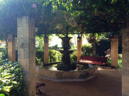 Zafiro Tropic: Pretty hotel surroundings