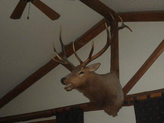 Buck's T-4 Lodge : Buck's Lobby