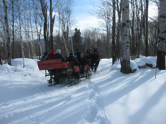 The Mountain Top Inn & Resort: sleigh ride