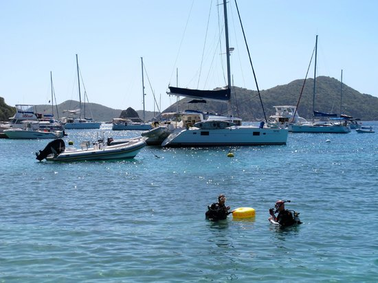 Sail Caribbean Divers : Discover Scuba available at our Satelite locations