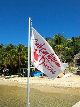 Sail Caribbean Divers