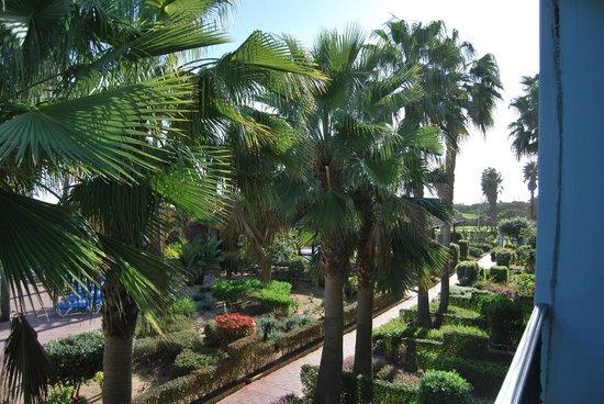"""Playaballena Spa Hotel: """"vista desde la habitación"""