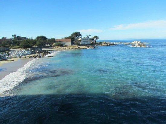 Super 8 Monterey / Carmel : Vista do aquário