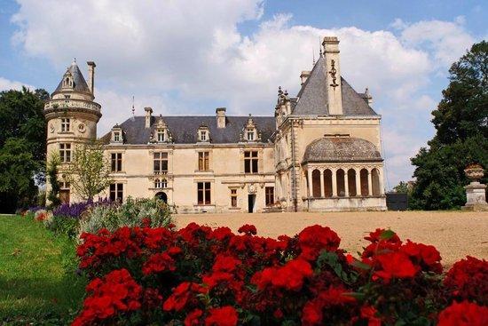Château de la Court d'Aron