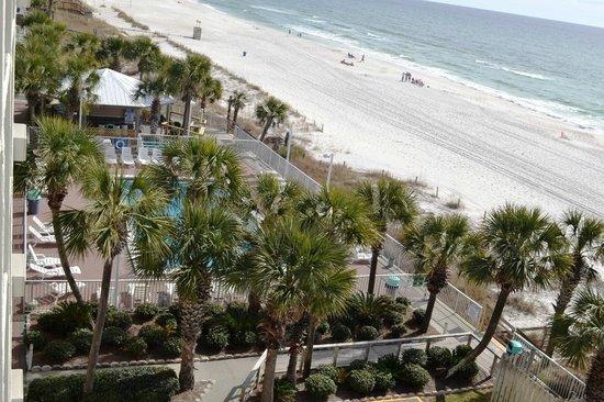 Opinion you bikini beach resort panama city beach