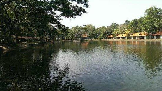Vivanta by Taj: Lake