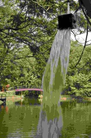 Vivanta by Taj: Watersplash