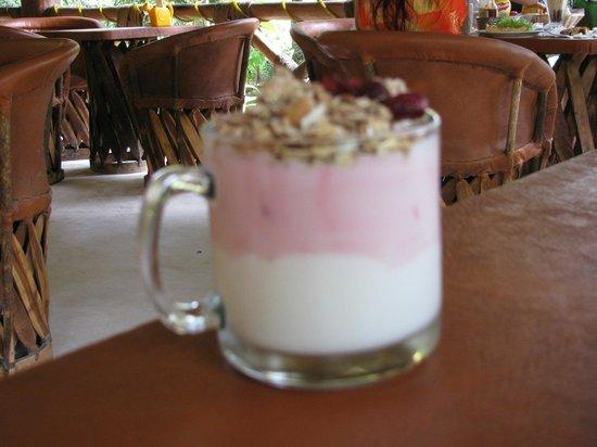 Le Jardin Panaderia/Cafeteria: Yogurt