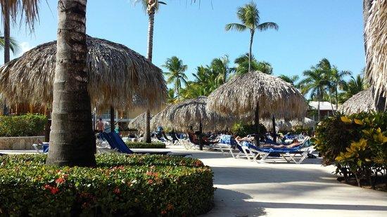 Grand Palladium Bavaro Suites Resort & Spa: Beside the pool