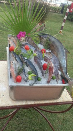 Mövenpick Resort Hurghada: Обычный ужин, выбирай, какую хочешь