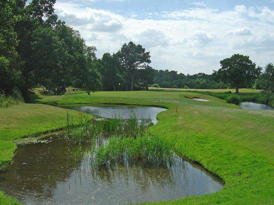 The Bracken: Bracken Course, 16th hole