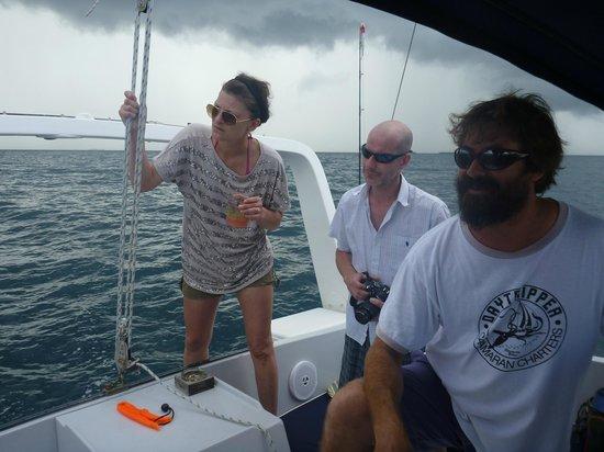 Daytripper Catamaran Charters: Was that a dolphin?