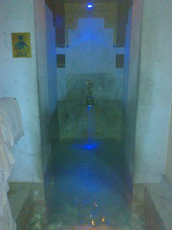 Domaine de Divonne: Bain d'eau gelée (après sauna)