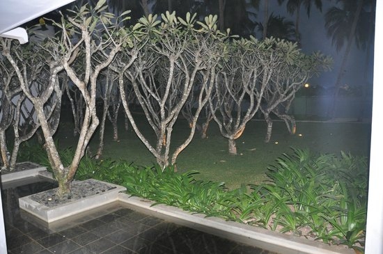 AVANI Kalutara Resort: Reception